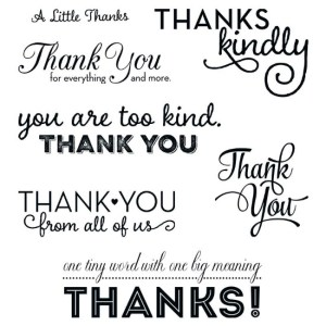 thank you messages stamp set one big meaning
