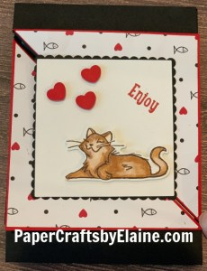 Sassy cat cards, greeting cards, handmade greeting cards, card for cats, how to make a fancy fold card for cats, Wow cards,