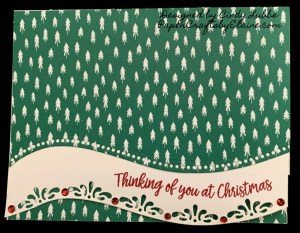 Greeting Cards, handmade greeting card, Papercraftsbyelaine.com, cards for all occasions, Christmas Cards, Cards with a WOW,