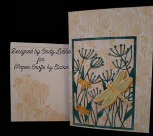 Greeting cards, handmade greeting cards, cards for all occasions, stamping, rubber stamping, easy to make cards, birthday cards, cards for all ages, How to make a card with stamps, Stampin' Up Gift Certificate, purchase Stampin' Up gift cards