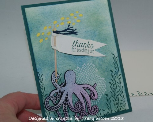 1492 Octopus Thanks Card