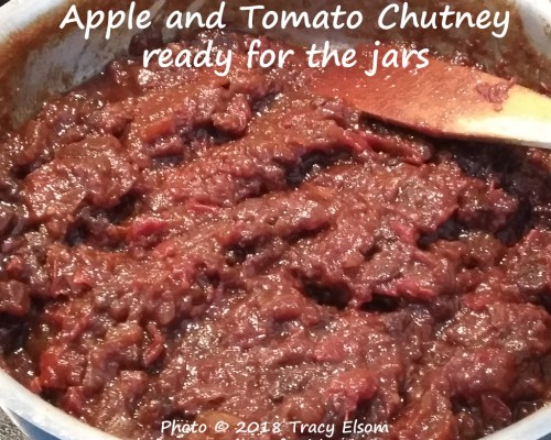 Tomato & Apple Chutney
