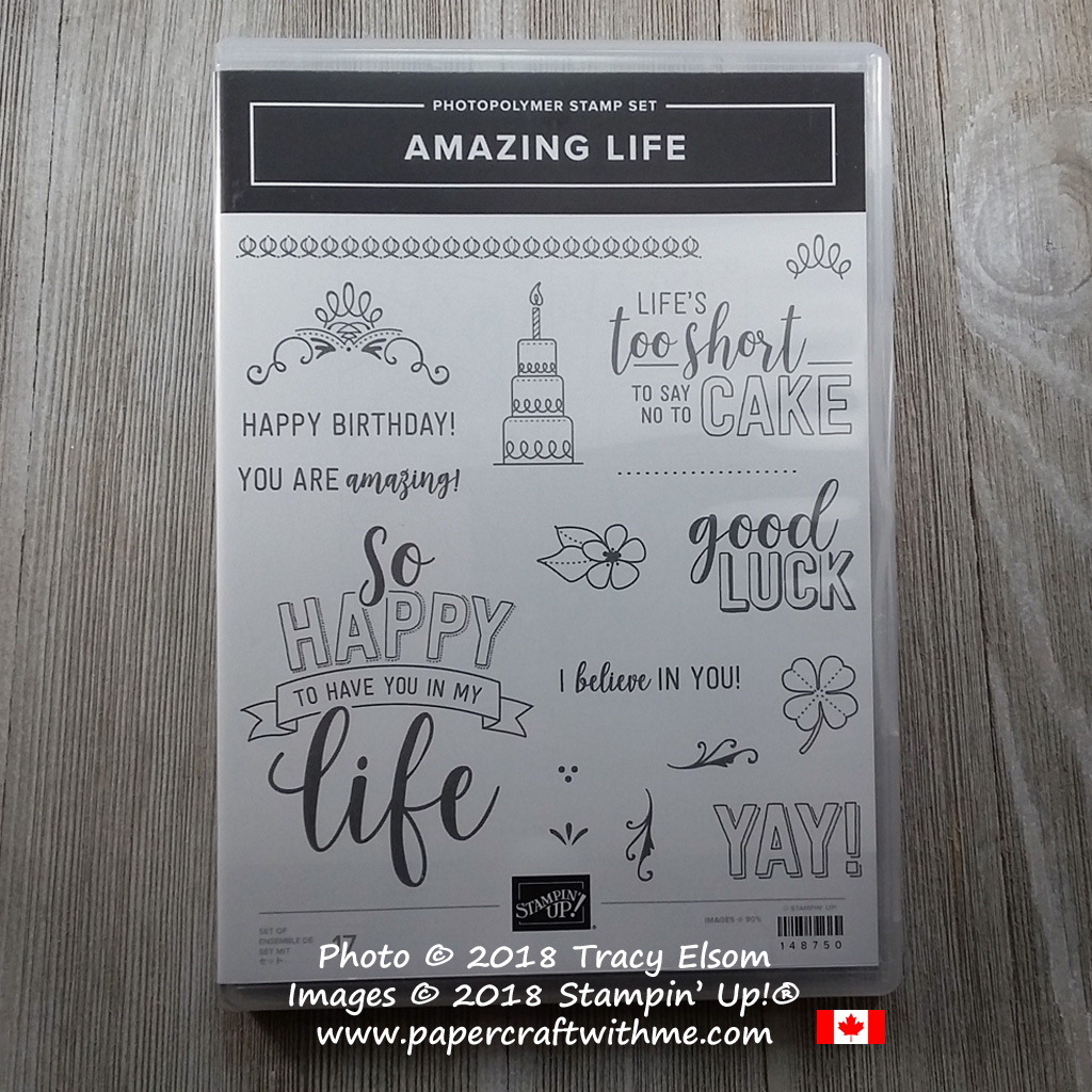 Photo of Amazing Life Stamp Set from Stampin' Up!