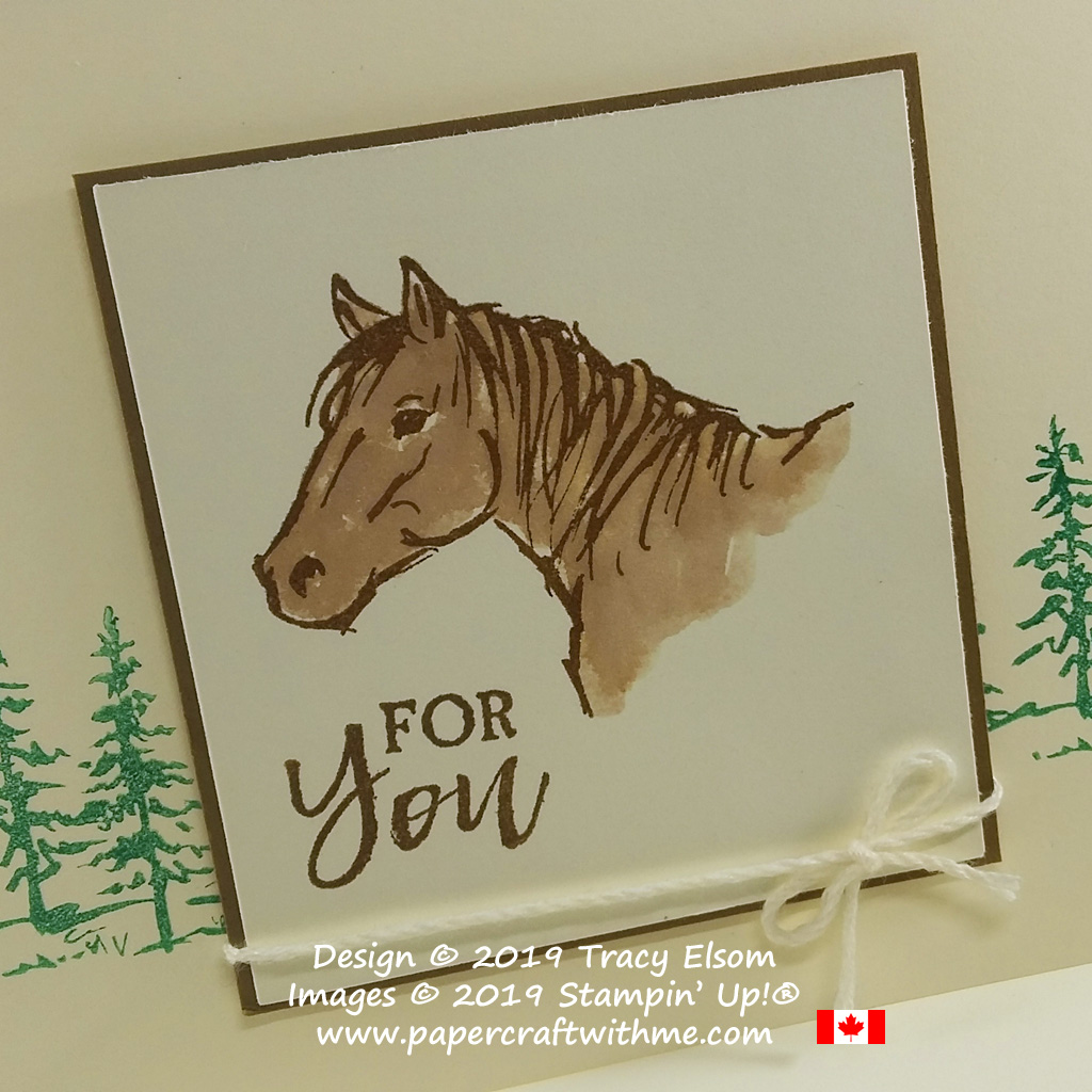 Close up of for you card with horse head image from the Let it Ride Stamp Set from Stampin' Up!