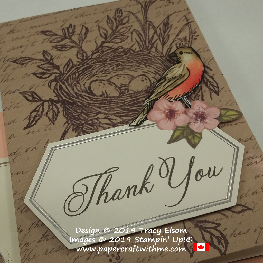 Close up of thank you card with American Robin, created using the May 2019 Paper Pumpkin kit 'Hugs From Shelli' and Bird Ballad Designer Series Paper from Stampin' Up! Subscribe by May 10th, 2019 to get this kit.