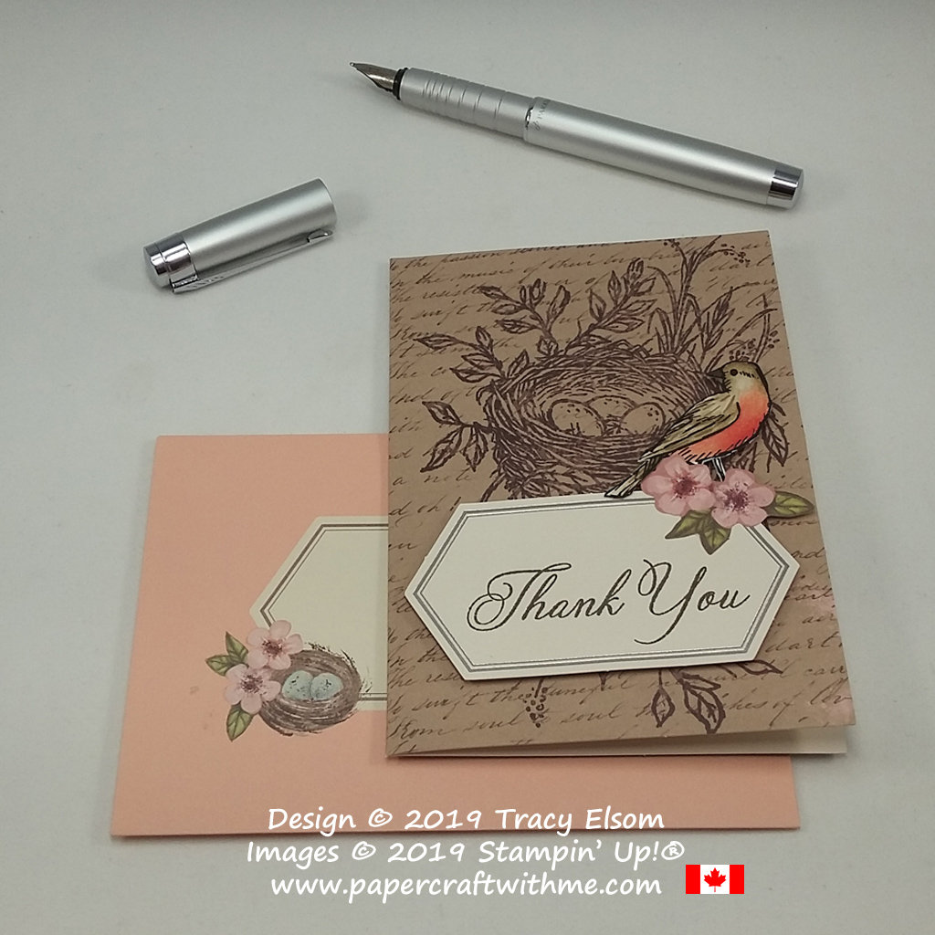 Thank you card with American Robin, created using the May 2019 Paper Pumpkin kit 'Hugs From Shelli' and Bird Ballad Designer Series Paper from Stampin' Up! Subscribe by May 10th, 2019 to get this kit.