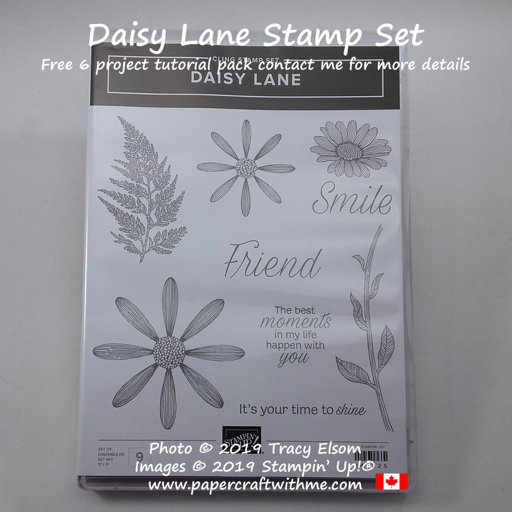 Daisy Lane Stamp Set from Stampin' Up!