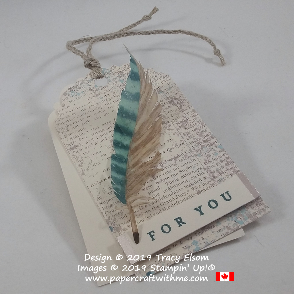 Masculine gift tag with vellum feather and braided tie (alternate project for the May 2019 Paper Pumpkin Kit - Hugs From Shelli) from Stampin' Up!