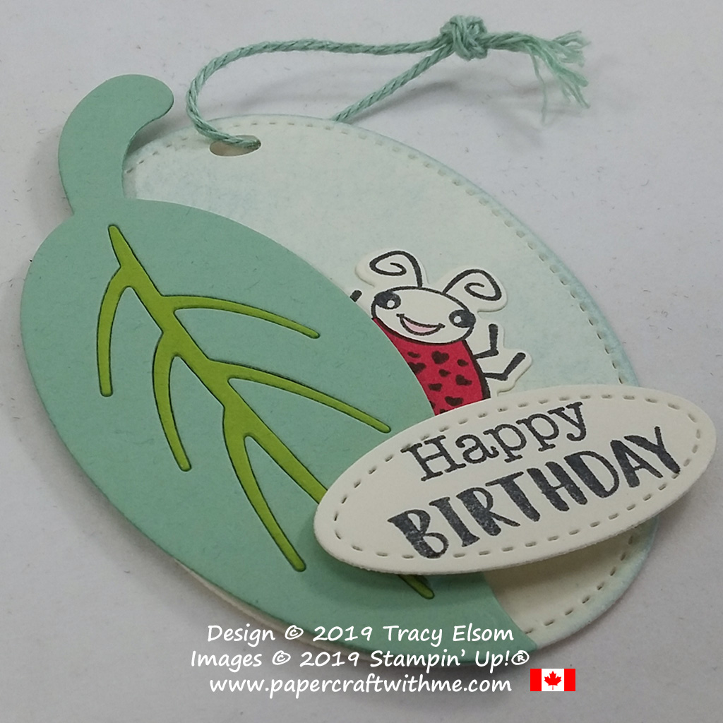 Close up of ladybird / ladybug birthday gift tag crated using the Wiggle Worm Stamp set and coordinating Wiggly Bugs Dies from Stampin' Up!