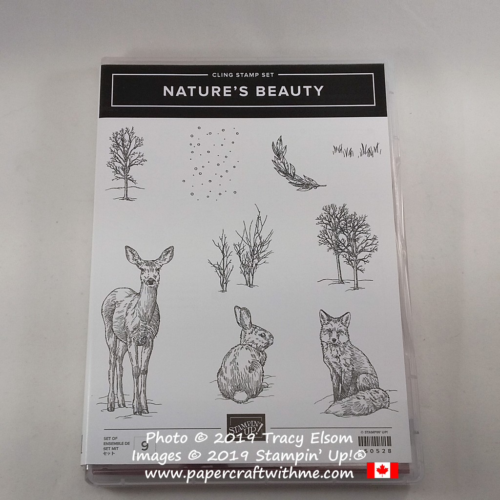 Nature's Beauty Stamp Set from the Stampin' Up! 2019 Holiday Catalogue. $4CAD from the sale of every set goes towards mental health organisations in Canada. #papercraftwithme
