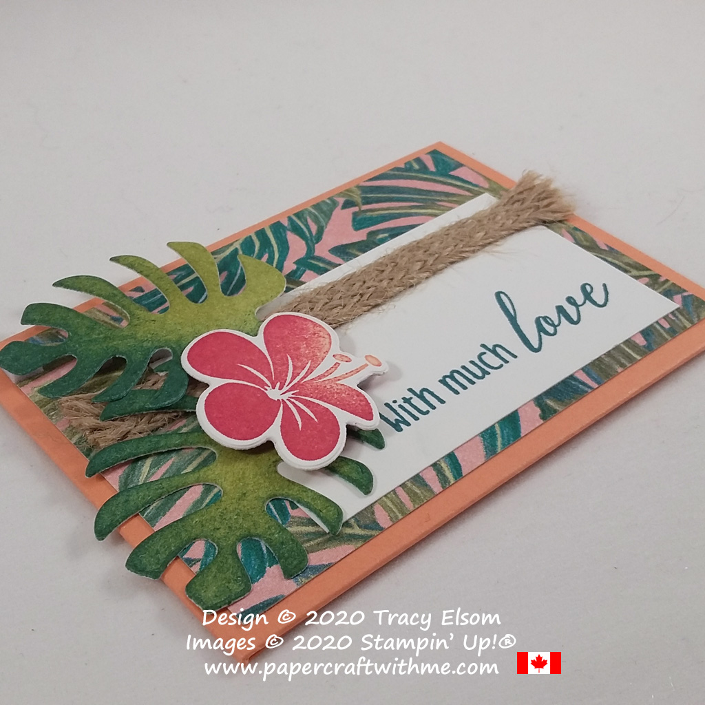 Gift card holder created using the Tropical Chic Stamp Set, Tropical Dies and Tropical Oasis Card Pack from Stampin' Up! #papercraftwithme