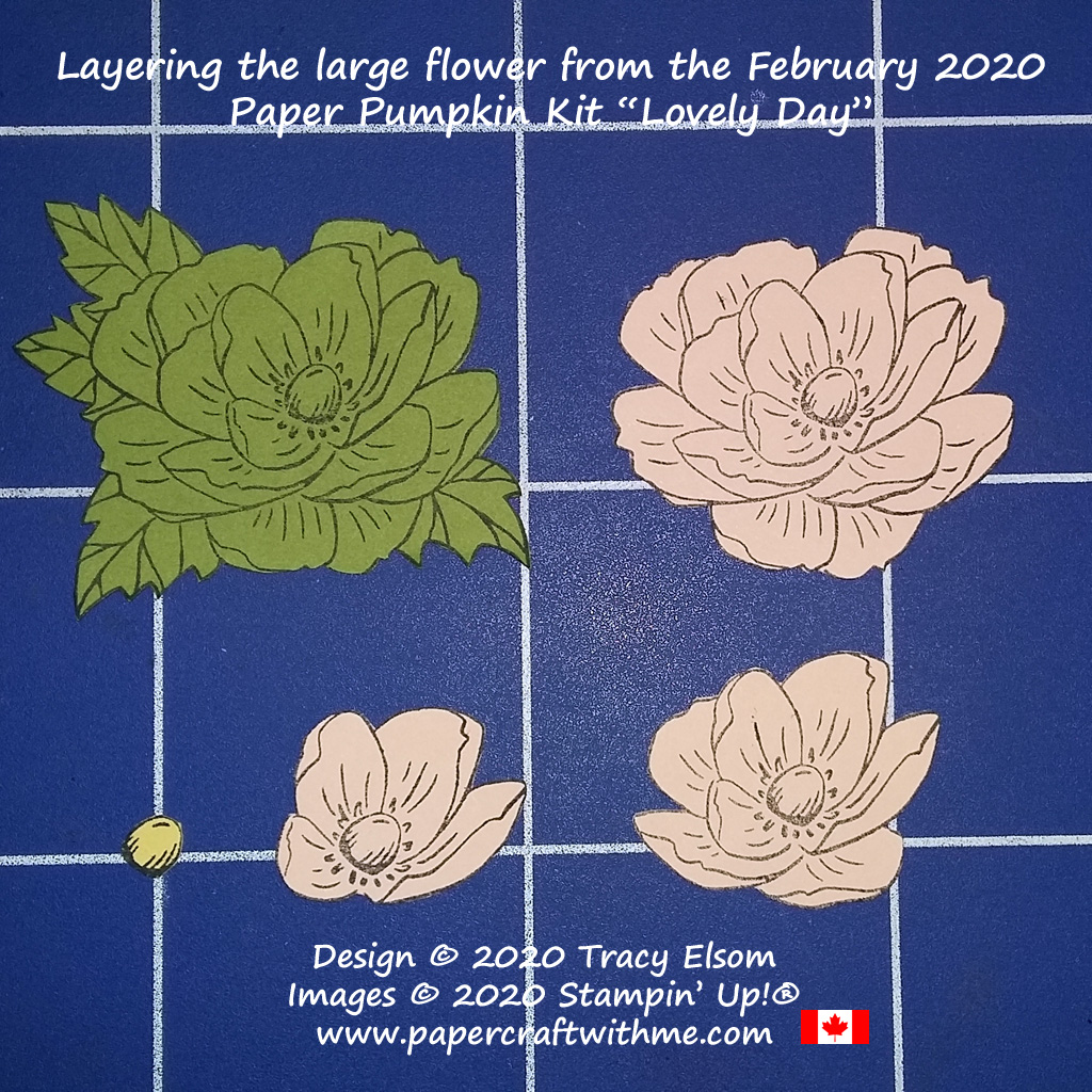 "The large peony flower image from the February 2020 Paper Pumpkin kit ""Lovely Day"" is perfect for layering. #papercraftwithme"