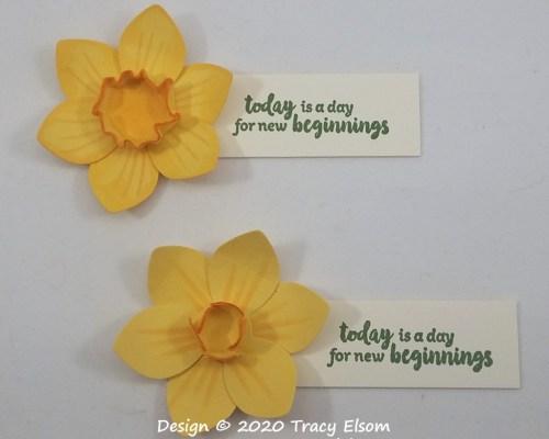 3D Daffodil Ideas