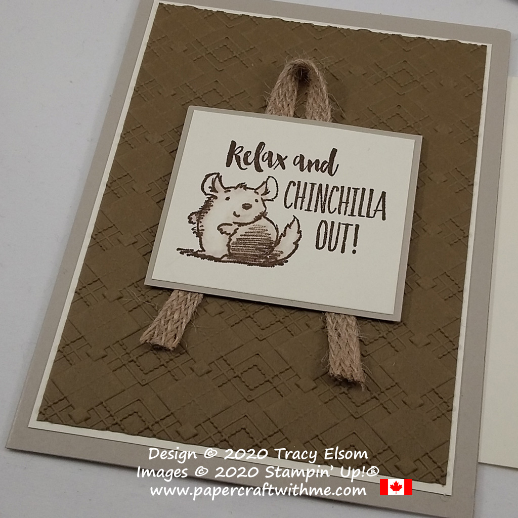 Relax and chinchilla out with this cute gender neutral card created using the Witty-cisms Stamp Set and Absolutely Argyle 3D Embossing Folder from Stampin' Up! #papercraftwithme