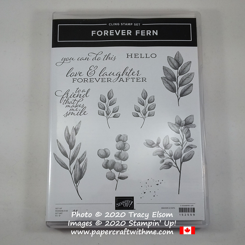 Forever Fern Stamp Set from Stampin' Up! #papercraftwithme