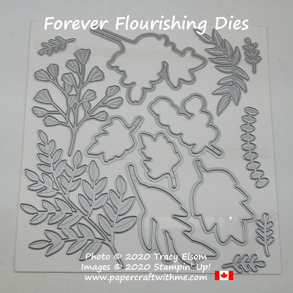 Forever Flourishing Dies from Stampin' Up! #papercraftwithme