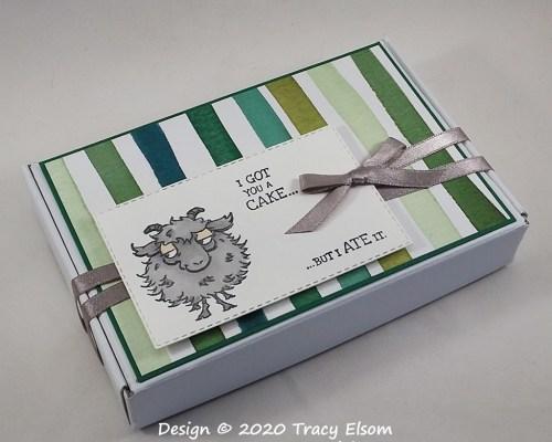 BB64 Definitely Not A Cake Box