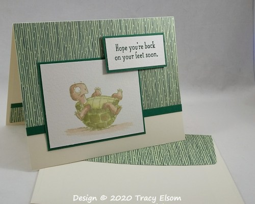 2009 Back On Your Tortoise Feet Card
