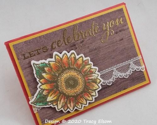 GC217 Let's Celebrate Gift Card Holder