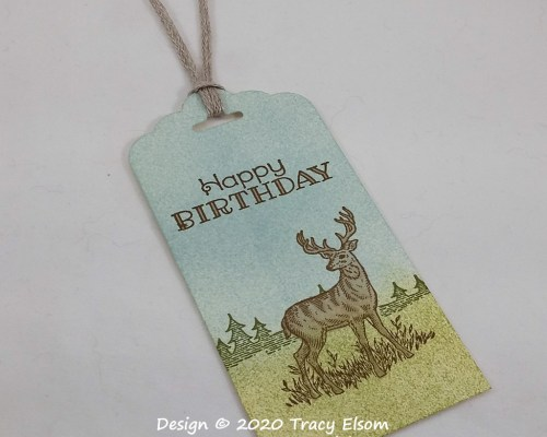 Stag Birthday Tag