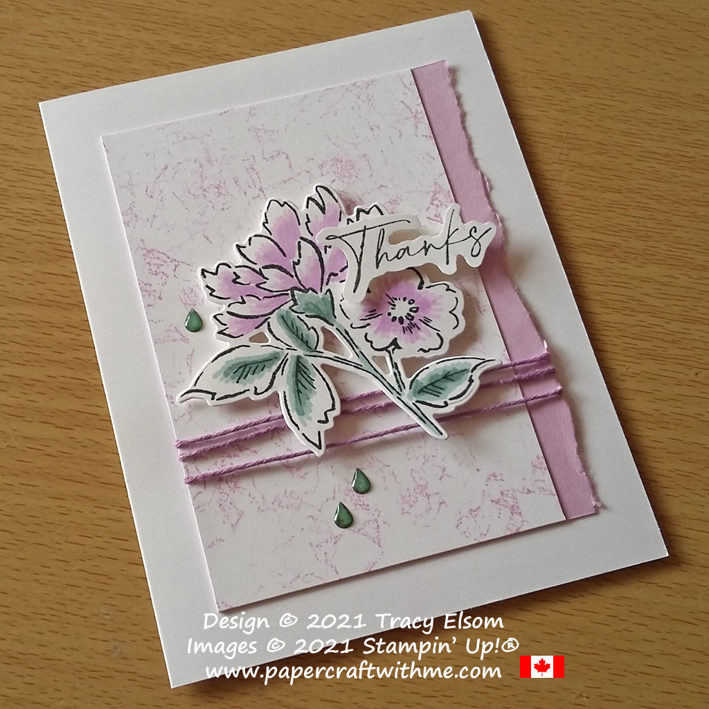 Thanks card created using the Hand-Penned Petals Stamp Set and Penned Flowers Dies with new In Colors Stampin' Blends alcohol markers from Stampin' Up! #papercraftwithme
