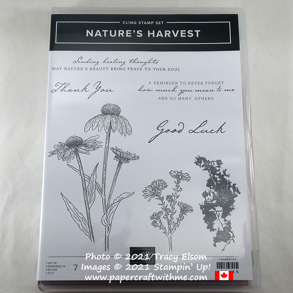 Nature's Harvest Stamp Set complements and coordinates with the Harvest Dies from Stampin' Up! #papercraftwithme