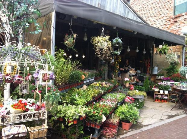 Flower Stall, Seoul