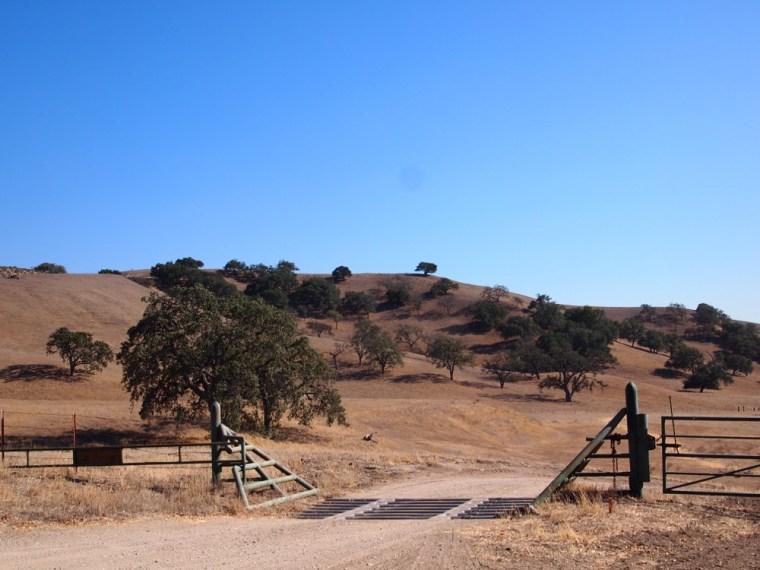 Santa Barbara Wine Country scenary