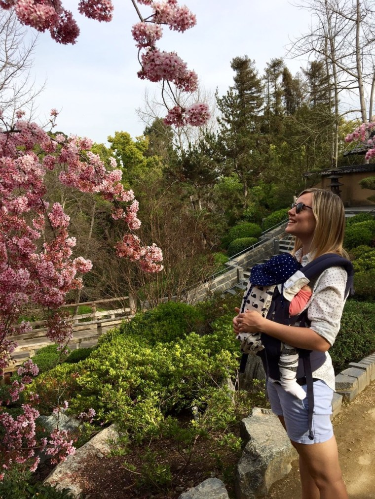 Cherry Blossom Tree Huntingdon Library and Botanical Garden