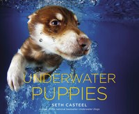 Cover for Underwater Puppies