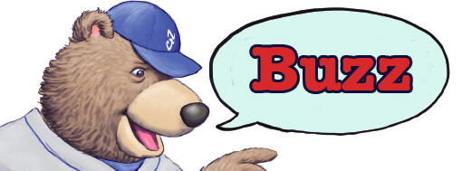 fuzzy_baseball_buzz_graphic