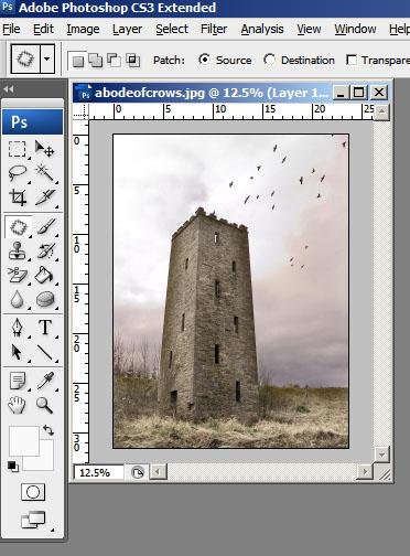 Snapshot Original Image