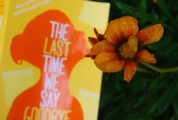 the last time we say goodbye (2)