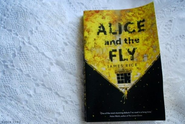 alice and the fly (2)