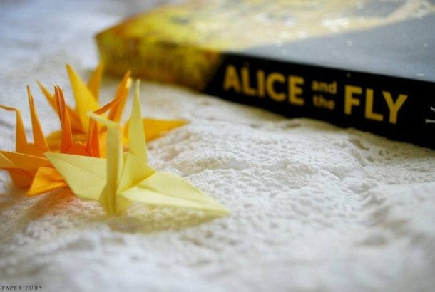 alice and the fly (7)