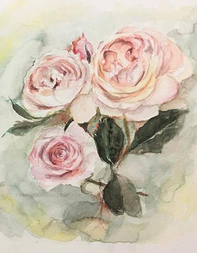 Loose Roses