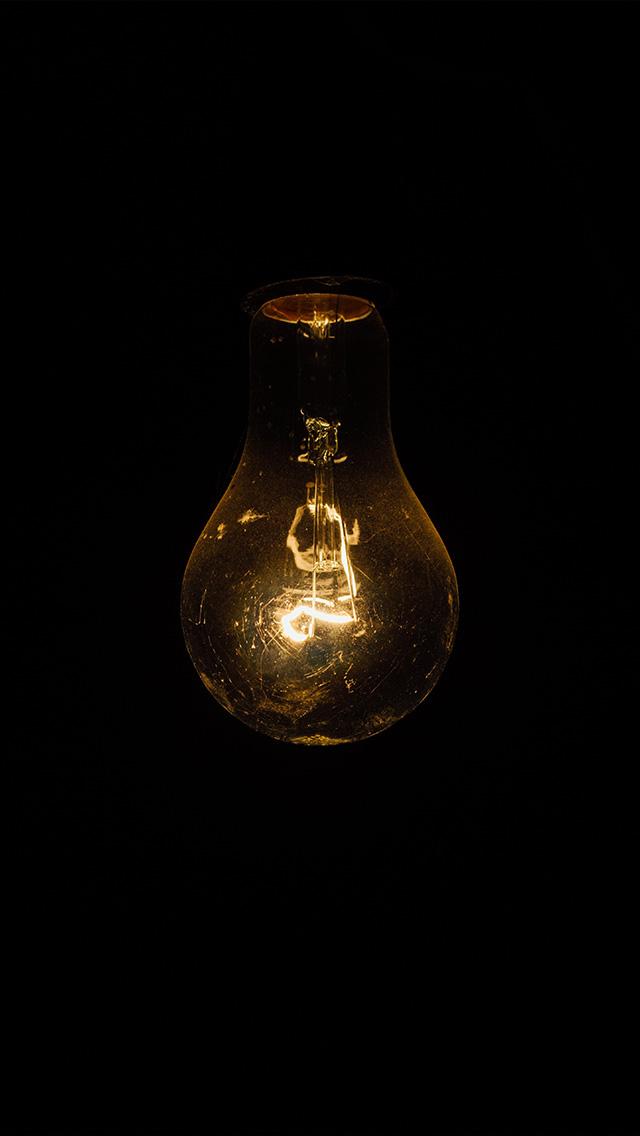 Large Light Bulb