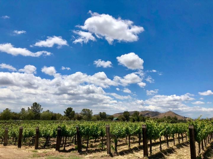 California Day Trips: Exploring Agua Dulce