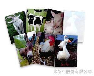 動物便條系列動物便條紙-便條紙_M-14436,1