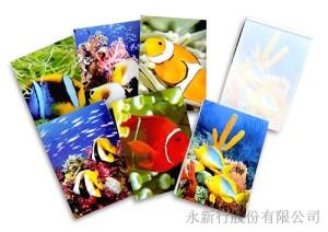 動物便條系列熱帶魚便條紙-熱帶魚便條紙-M-14412,2