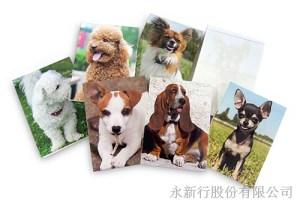 動物便條系列狗-便條紙_M-14438,2