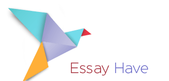 essay have review