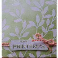 Blog hop de la Stampin'Class, spécial Printemps