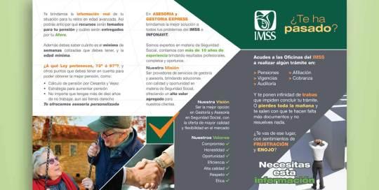 triptico promocional para IMSS