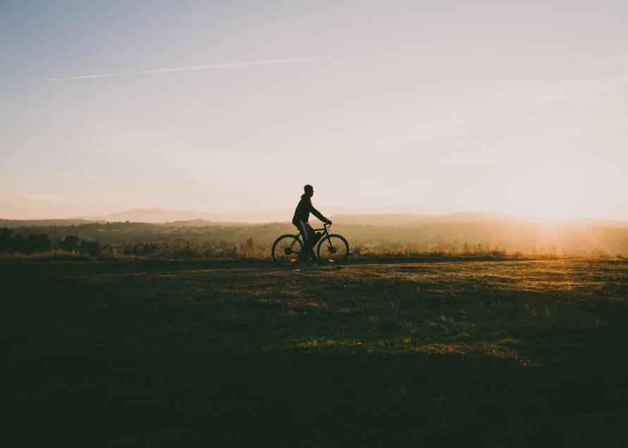 Kinrooi papillon fietsen