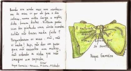 Laço de Roque Gameiro