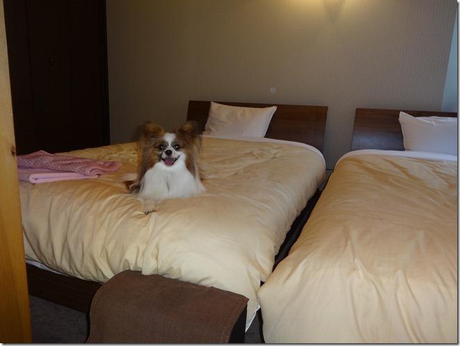 ベッドの上でリラックス中のアリア