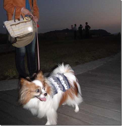 イルキャンティビーチェ外でアリアと記念撮影