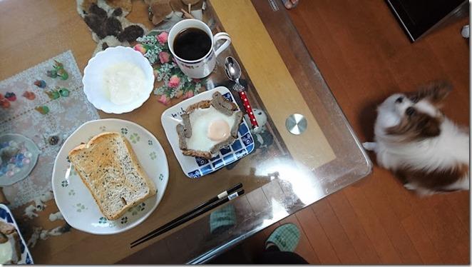 朝食用に目玉焼きにじゃこてんを入れてみたじゃこてん調理例