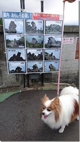 北軽井沢でペットと観光できる鬼押出し園おもしろ岩探しポスター